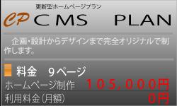 CMS PLAN